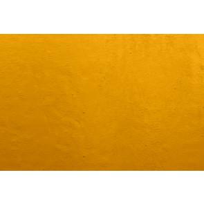 WISSMACH 49 Seville oranjeoker