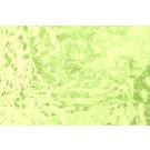 W309M (0,12m²) Groen